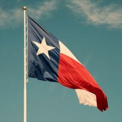Texas Medicaid Providers Policy Manual (TMPPM)
